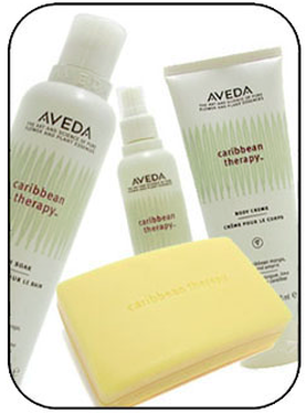 Aveda Products Denver